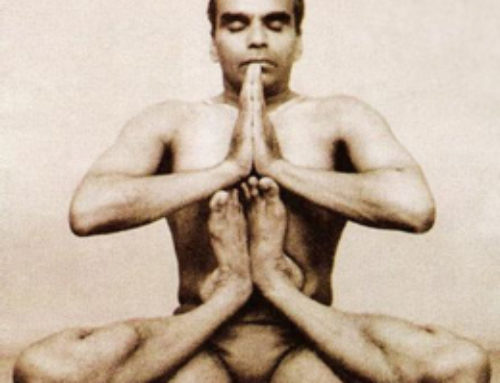 Vintage BKS Iyengar Video